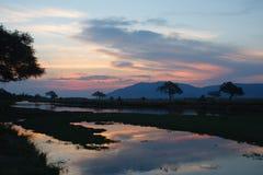 Tramonto dello Zambesi Fotografie Stock Libere da Diritti