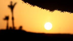 Tramonto in deserto Immagine Stock