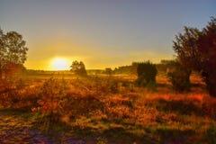 Tramonto di alba nella brughiera del neburg del ¼ di LÃ immagini stock libere da diritti