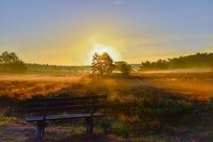 Tramonto di alba nella brughiera del neburg del ¼ di LÃ fotografie stock