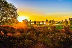 Tramonto di alba nella brughiera del neburg del ¼ di LÃ immagini stock