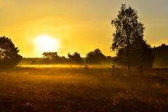 Tramonto di alba nella brughiera del neburg del ¼ di LÃ immagine stock libera da diritti