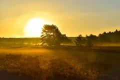 Tramonto di alba nella brughiera del neburg del ¼ di LÃ immagine stock