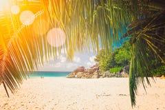 Tramonto di Art Beautiful sopra la tonalità tropicale dell'annata della spiaggia immagine stock