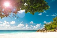 Tramonto di Art Beautiful sopra la tonalità tropicale dell'annata della spiaggia fotografia stock