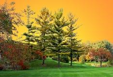 Tramonto di autunno Fotografie Stock