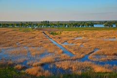 Tramonto di delta di Danubio immagine stock
