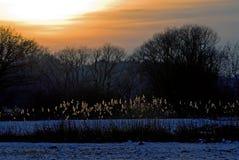 Tramonto di inverno Immagini Stock Libere da Diritti