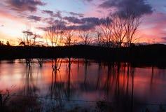 Tramonto di inverno nel lago Immagini Stock Libere da Diritti