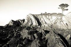 Tramonto di Lee Bay Fotografia Stock