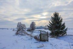 Tramonto di orario invernale sopra il prato Immagine Stock Libera da Diritti