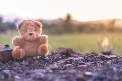 Tramonto di sorveglianza del giocattolo della bambola dell'orsacchiotto da solo con il vecchio tono d'annata Fotografie Stock Libere da Diritti
