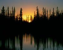 Tramonto dietro la foresta Fotografia Stock Libera da Diritti