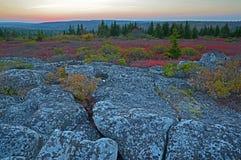 Tramonto a Dolly Sods Wilderness Fotografie Stock Libere da Diritti