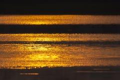 Tramonto dorato Immagine Stock Libera da Diritti