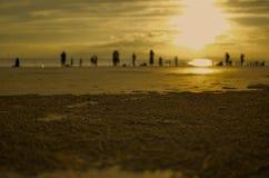 Tramonto dorato e sabbia Fotografia Stock Libera da Diritti