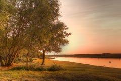 Tramonto dorato sopra il lago calmo con il cigno Fotografia Stock