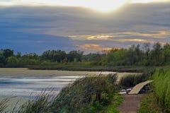 Tramonto dorato sopra un parco con gli alberi e riflessione in un lago Fotografia Stock Libera da Diritti