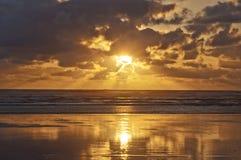Tramonto dorato sulla costa dell'oceano Pacifico, U.S.A. Immagine Stock Libera da Diritti