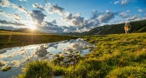 Tramonto drammatico e pittoresco nelle alpi dell'Austria Fotografia Stock Libera da Diritti