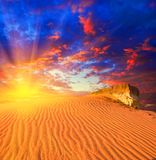 Tramonto drammatico in un deserto Immagini Stock