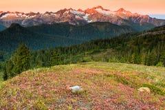 Tramonto e montagna Fotografia Stock