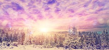 Tramonto fantastico di inverno nella montagna nuvole variopinte che emettono luce al sole sopra gli alberi innevati Fotografie Stock Libere da Diritti