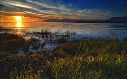 Tramonto fertile della banca di fiume dell'erba Fotografie Stock Libere da Diritti