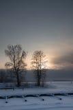 Tramonto freddo Fotografia Stock