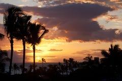 Tramonto hawaiano Fotografia Stock Libera da Diritti