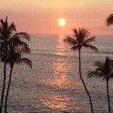Tramonto hawaiano Immagini Stock