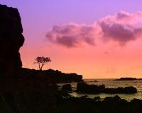 tramonto hawaiano della siluetta Fotografia Stock