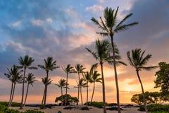 Tramonto hawaiano sulla grande isola Immagini Stock