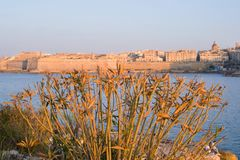 Tramonto a La Valletta, Malta Immagini Stock Libere da Diritti