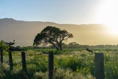 Tramonto laterale del paese in Soledad California immagini stock libere da diritti
