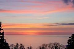 Tramonto luminoso dell'acquerello sopra il mare, incorniciato dalle siluette delle piante immagini stock