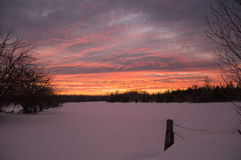 Tramonto luminoso di inverno sopra il pascolo nevoso dell'azienda agricola con fencepost Immagine Stock Libera da Diritti