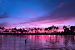 Tramonto magico in atmosfera porpora, Hawai fotografie stock libere da diritti