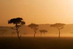 Tramonto in Massai Mara Fotografie Stock Libere da Diritti