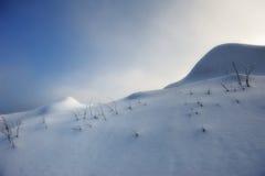 Tramonto nebbioso in montagne di Harz fotografie stock libere da diritti