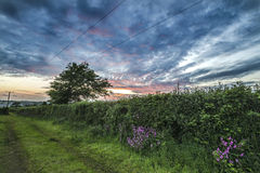 Tramonto nei campi dell'azienda agricola con il bello cielo nuvoloso, Cornovaglia, Regno Unito Fotografie Stock