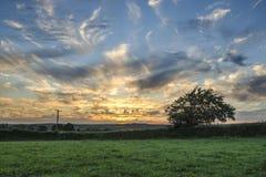 Tramonto nei campi dell'azienda agricola, Cornovaglia, Regno Unito Fotografie Stock Libere da Diritti