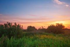 Tramonto nel campo di estate Fotografia Stock