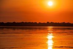 Tramonto nel delta Romania di Danubio Belle luci bluastre in acqua Bello paesaggio di tramonto dalla biosfera di delta di Danubio immagine stock