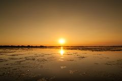 Tramonto nel delta Romania di Danubio Belle luci bluastre in acqua Bello paesaggio di tramonto dalla biosfera di delta di Danubio fotografia stock