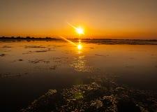 Tramonto nel delta Romania di Danubio Belle luci bluastre in acqua Bello paesaggio di tramonto dalla biosfera di delta di Danubio fotografie stock