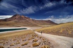 Tramonto nel deserto Stock Images