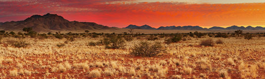 Tramonto nel deserto di Kalahari immagini stock
