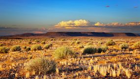 Tramonto nel deserto di Kalahari Immagine Stock Libera da Diritti