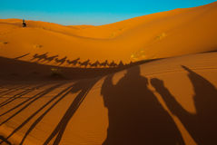Tramonto nel deserto di Sahara Immagine Stock